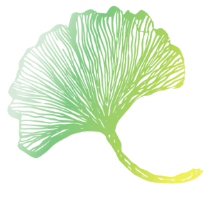 Gingko-screen-Nature To Nurture Aromatherapy & Massage in Hemel, Herts & Bucks
