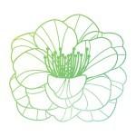 Nature-to-Nurture-Leaf-Icon-8