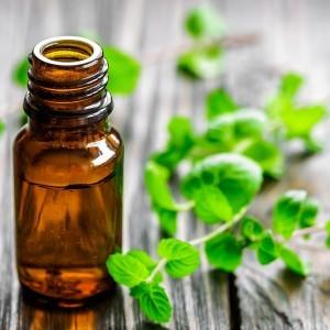 Mint Oil - Nature To Nurture - Aromatherapy In Hemel & St Albans