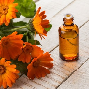 Calendula-macarated oil is created by steeping the flowers of the Marigold to obtain the rich properties of the flowers