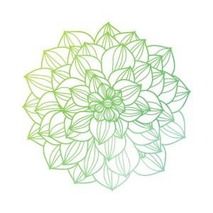 Nature-to-Nurture-Leaf-Icon-10-Nature To Nurture Aromatherapy & Massage in Hemel, Herts & Bucks