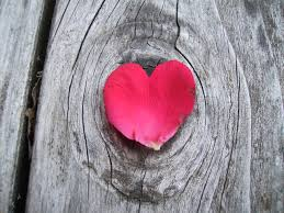 Rose Petal Heart-Nature To Nurture Aromatherapy & Massage in Hemel, Herts & Bucks